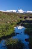 Supporto Snowcapped di Aragats con le colline verdi nella parte anteriore Immagini Stock Libere da Diritti