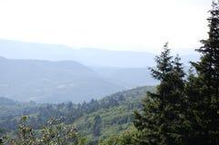Supporto verde della Toscana del parco fotografie stock libere da diritti