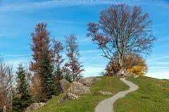 Supporto vicino Rigi, alpi del paesaggio stupefacente di autunno Fotografia Stock