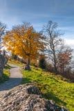 Supporto vicino Rigi, alpi del paesaggio stupefacente di autunno, Immagine Stock