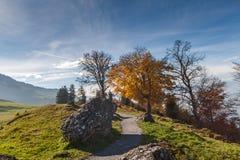 Supporto vicino Rigi, alpi del paesaggio stupefacente di autunno, Immagini Stock