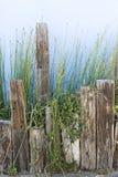 Supports colorés de planteur et de bois de construction photos stock