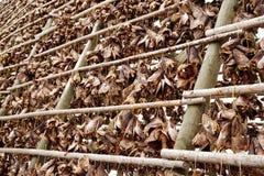 Supports en bois sur les lais pour sécher la morue en hiver Village de p?che de Reine, ?les de Lofoten images libres de droits