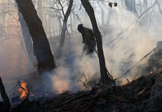Suppression of Forest Fire 13 Royalty Free Stock Images