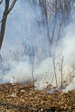 Suppression of forest fire 81 Royalty Free Stock Photos