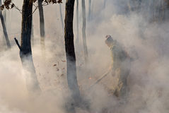 Suppression of Forest Fire  Stock Photography