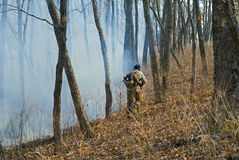 Suppression of forest fire 89 Stock Photography