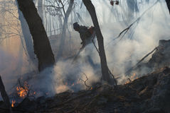 Suppression Of Forest Fire 24 Royalty Free Stock Photos