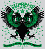 Supreme flight Royalty Free Stock Image
