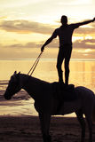 Supreme Horse-Riding At Sunset Stock Image