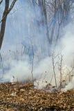 Supresión del incendio forestal 81 Fotos de archivo libres de regalías