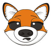 Suprise muzzle of fox Royalty Free Stock Image