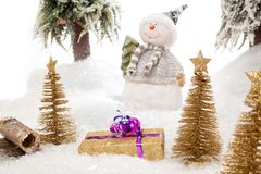 Suprise from a snowman Stock Photography