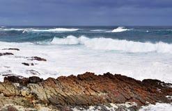 Suráfrica, Western Cape, península del cabo Fotografía de archivo libre de regalías