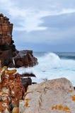 Suráfrica, Western Cape, península del cabo Imagen de archivo
