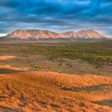 Sur de Australia de la libra de Wilpena Fotos de archivo