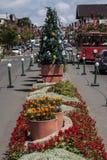 Sur del árbol de navidad de Gramado del Brasil Imagen de archivo