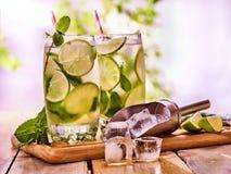 Sur des verres de conseils en bois avec de la glace de mohito et de scoop Photos libres de droits