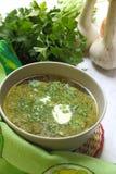 sur kräm- grön soup Arkivbilder