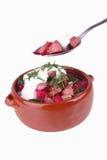 sur kräm- soup för beta royaltyfri fotografi