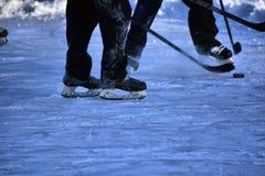 Sur l'étang congelé Photo libre de droits