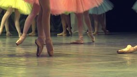 Sur l'étape de l'opéra et du ballet
