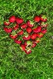 Sur l'herbe verte selon l'opinion du coeur a étendu l'endroit rouge de fraise pour la configuration d'appartement d'inscription Photo stock