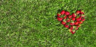 Sur l'herbe verte selon l'opinion du coeur a étendu l'endroit rouge de fraise pour la configuration d'appartement d'inscription Image stock