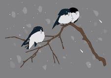Sur la branche d'un arbre reposant 3 oiseaux Image libre de droits