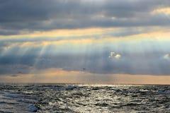 Sur la côte baltique de la Pologne photo libre de droits