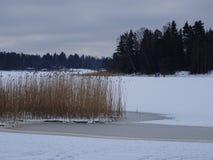 Sur la glace nous pouvons patiner notre archipel et sa belle nature de elle Image libre de droits