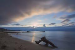 Sur la plage Image stock