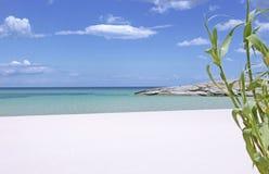 Sur la plage blanche Images libres de droits