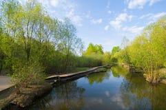 Sur la rivière Images stock