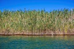 Sur la rivière de Dalyan Images libres de droits