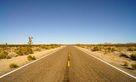 Sur la route du stationnement national de mojave Image stock