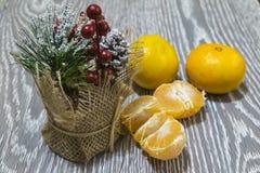 Sur la table est un bouquet décoratif des branches, des baies et des cônes de sapin Sont près les mandarines images libres de droits