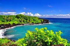Sur le bord en Hawaï Photographie stock libre de droits