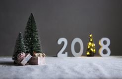 Sur le champ sous les sapins dans la distance sont les schémas 2018 où dans le rôle d'un arbre de Noël avec des lumières Photographie stock libre de droits