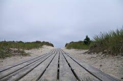 Sur le chemin à la plage Photographie stock