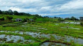 Sur le chemin à Lumban Silintong Photographie stock