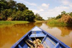 Sur le chemin d'aller pêchant en rivière de jungle d'Amazone, pendant l'en retard de l'après-midi, au Brésil. Photos stock