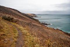 Sur le chemin les Cornouailles Angleterre R-U de côte Photos stock