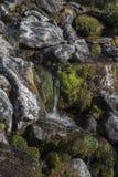 Sur le chemin vers le Stabbeskaret-massif, Trollstigen voisin en Norvège Photo stock