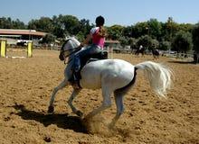 Sur le cheval Photographie stock