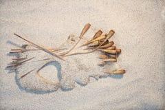 Sur le coeur de pavots de sable Photo stock