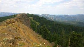 Sur le coup d'oeil de la montagne de surveillance d'agrostide blanche Image stock