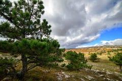 Sur le dessus d'une montagne en Crimée Image stock