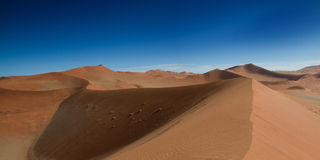 Sur le dessus de la dune de sable Image stock