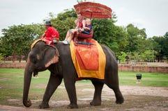Sur le dos de l'elefant Photos stock